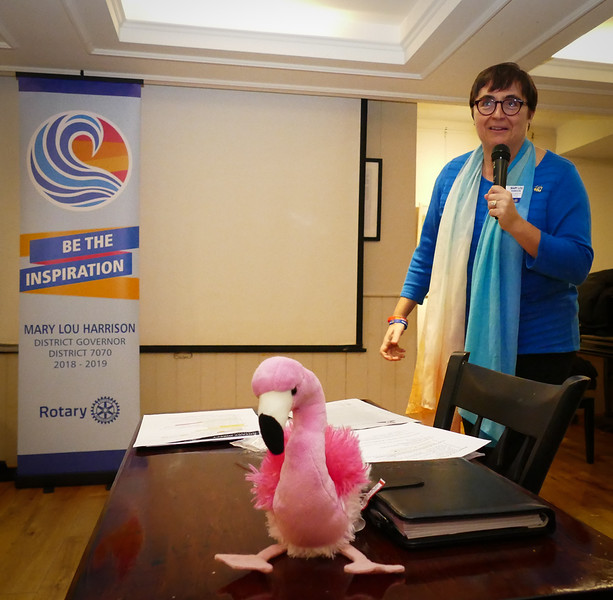 """She introduced us to """"Douglas - the Flamingo of Change""""  and told a story of how one flamingo had been persistent in leading a flock  in a new direction."""