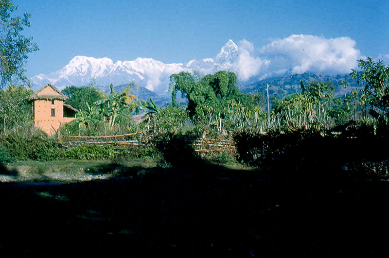 First view of the Annapurna Range, elevation 26,504 ft. The triangular peak is a separate mountain called Machpuhra or Fishes Tail in English. It is more than 23,000 ft. and is closer to the Valley, thus giving the impression of greater height.