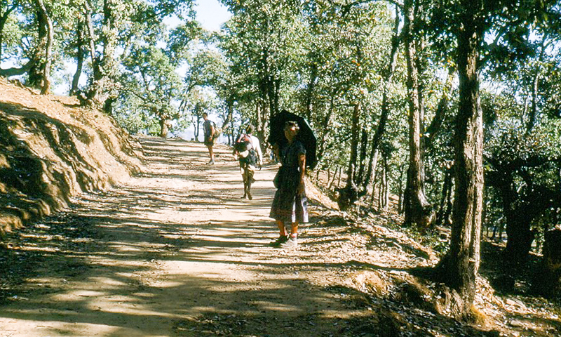 This spacious trail surprised us. Apparently King Mahendra visited this area a couple years previously and the locals prepared a nice trail for him. It lasted for about a kilometer.