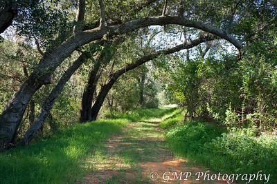 Casper's Wildnerness Park 3-28-2015