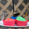 Alan P Butterfly Conservatory - 12