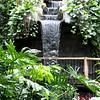 Waterfall - Jan