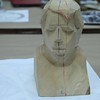 European bust model for Milt