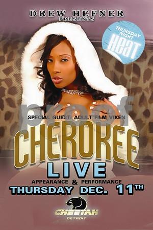 Cheetahs_12-11-08_Thursday
