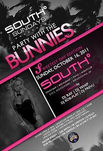 southsundays_bunnies1