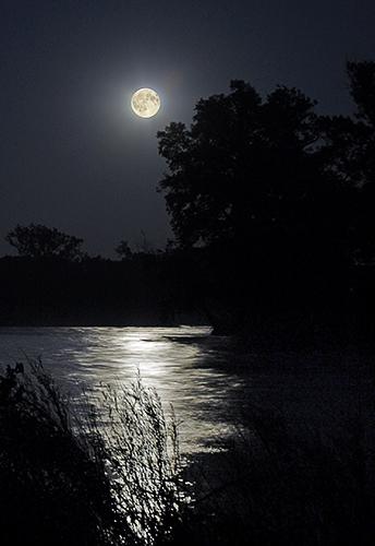 Moonlight-Sonata ©Ruth Rittichier