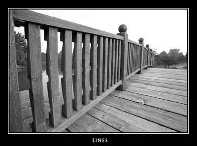 Lines ©John Green