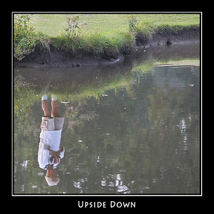 Upside Down ©John Green