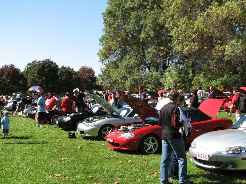 At the concours d'elegance