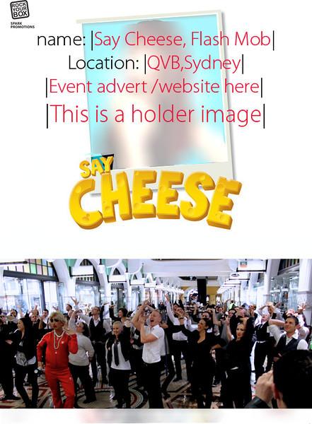SAY CHEESE Goes Glee! 'Vogue' Flash Mob