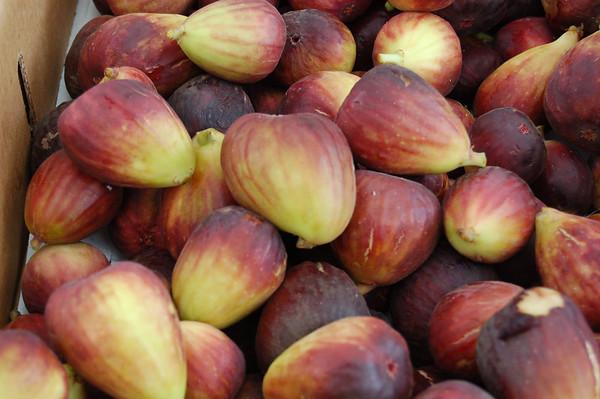 Figs_John Traexler_Food We Eat