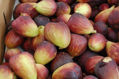Figs_John Traexler_Food We Eat