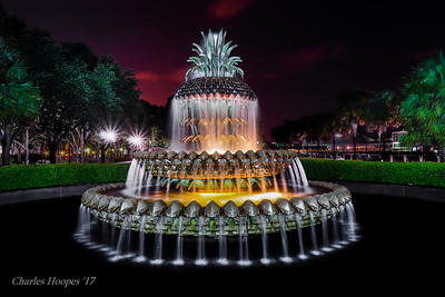 C Hoopes-Pineapple Fountain SC