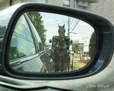 Favorite May_Tom Moyer_Horse in Mirror_