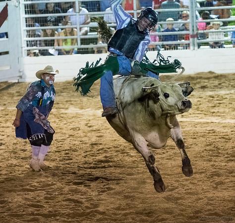 Good ol' Rodeo