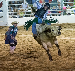 Good ol' Rodeo