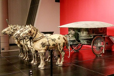 JDonato_Franklin Institute_Chariot