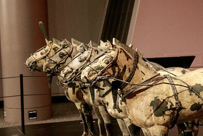 JDonato_Franklin Institute_Chariot Horses