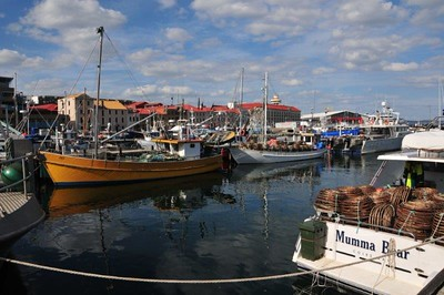 Constitution Dock, Hobart, TAS