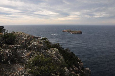 Islands off the Freycinet National Park, TAS