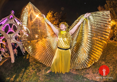 Burning Man Decompression 2014