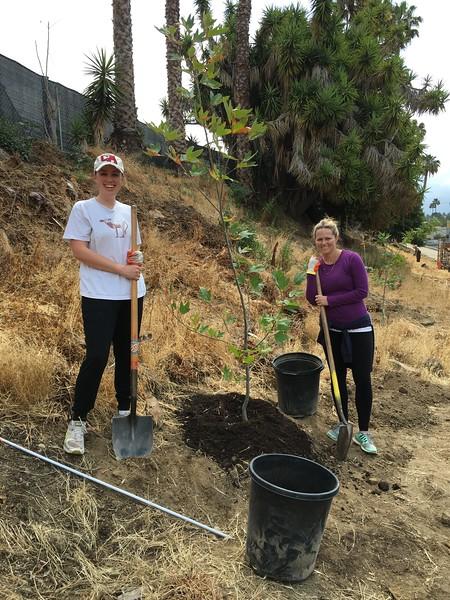 Tree Planting 2016