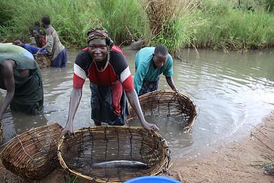 Basket Fishing