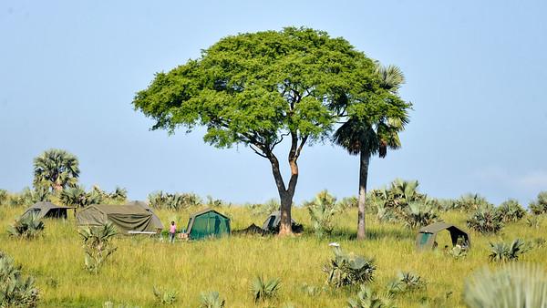 Camp at Te Okot