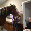 Clydesdale Rene, affectionately known as Neigh-Neigh, returned to the Village of East Harbor in Chesterfield Township on April 16, 2019, to visit residents at the senior living community. (Photos by Katelyn Larese)