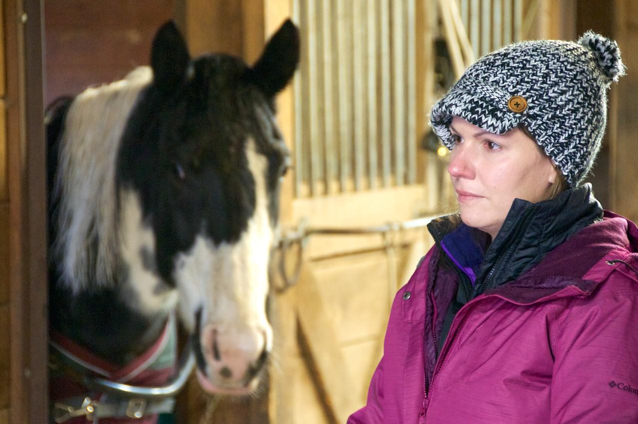 Coaching with Horses, Niki Salisbury.