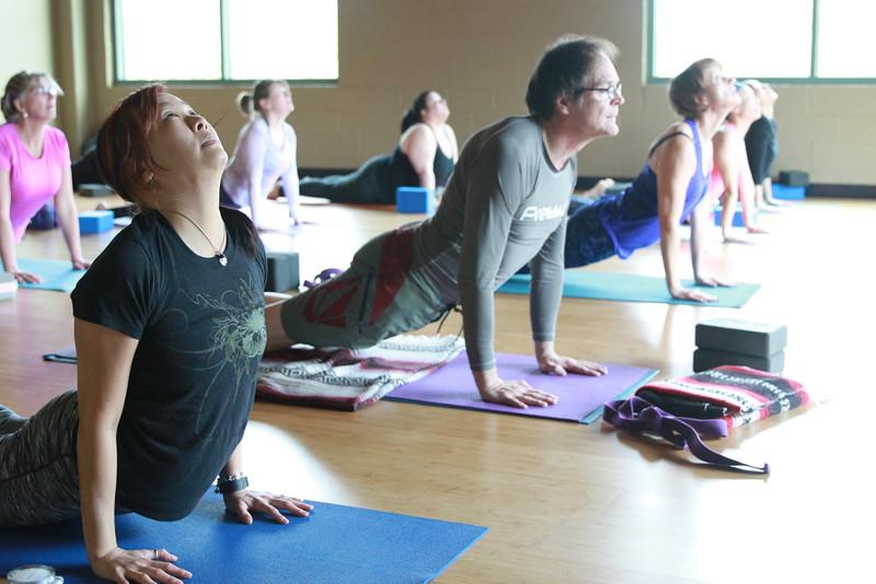 Y-Yoga-Class