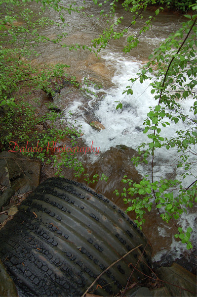 (Site 53) Cameron Mine Air Shaft- This discharge flows under Rt. 61 and enters Shamokin Creek immediately on the other side. Although its the 3rd worst in the watershed, the limited space make this discharge almost impossible to treat. It's the last discharge that enters Shamokin Creek.