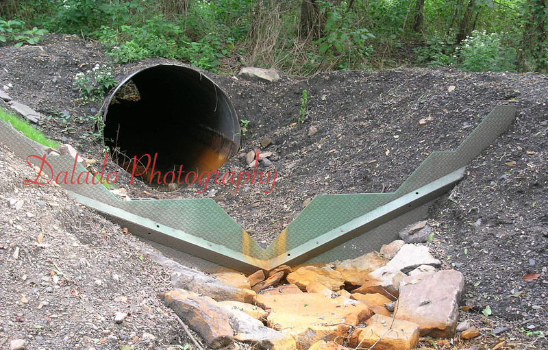 (Site 36) This intermittent flow likely comes from the old Luke Fidler mine workings.
