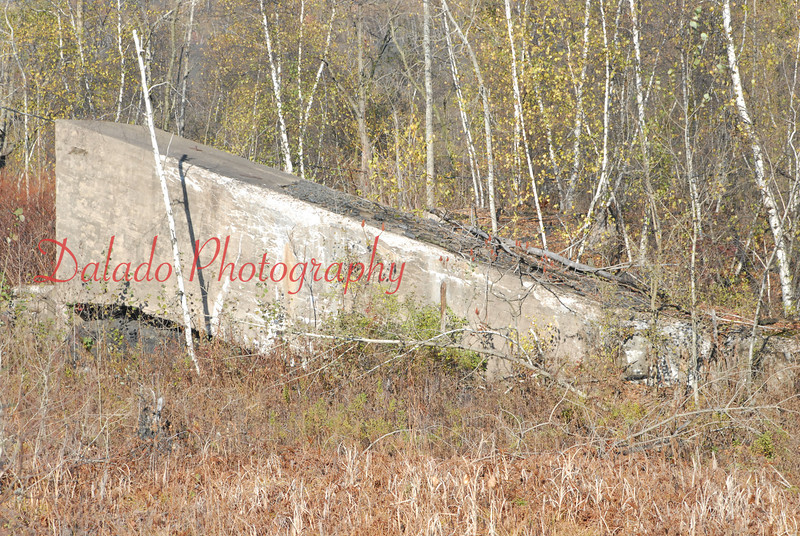 A slope that was part of the Merriam in Locust Summit.