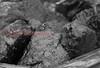 A random shot of coal.