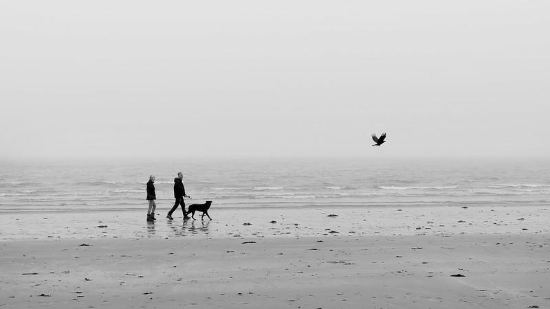 Ynys Llanddwyn Beach - Anglesey