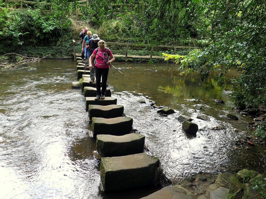 The Egton Bridge Stepping Stones