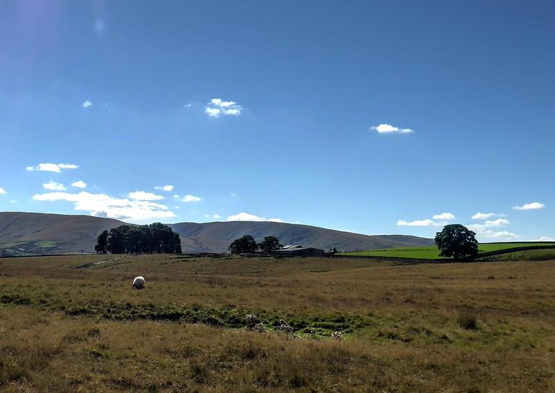 Ravenstonedale Moor