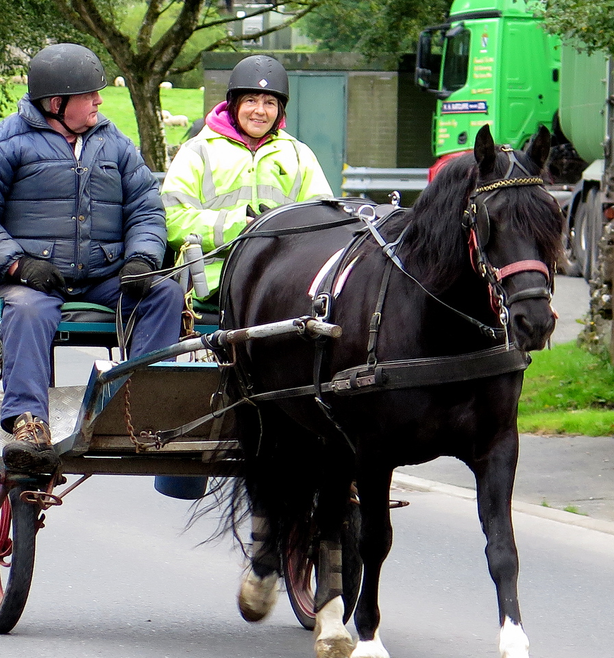 A couple drive past in their two wheeled carriage