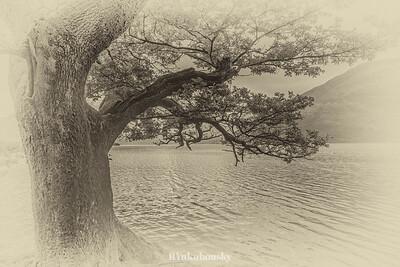 Ennerdale Water