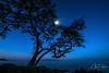 Moonlit Wailea Point