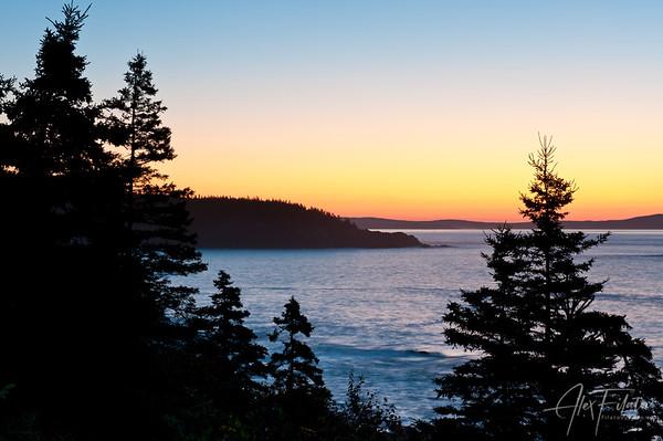 Acadia Morning Glow