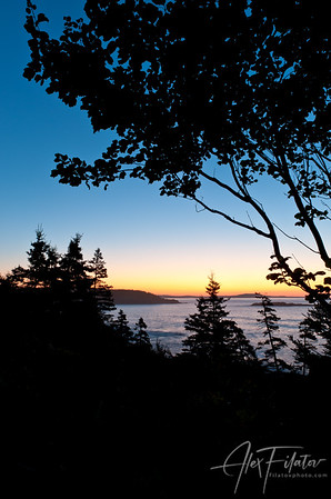 Coastline Silhouettes