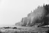 Foggy Otter Point