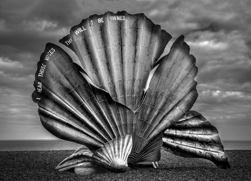 The 12 foot Scallop