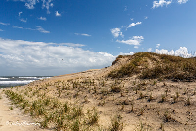 Atlantic Ocean & Dune at Milepost 46, US 12, Outer Banks