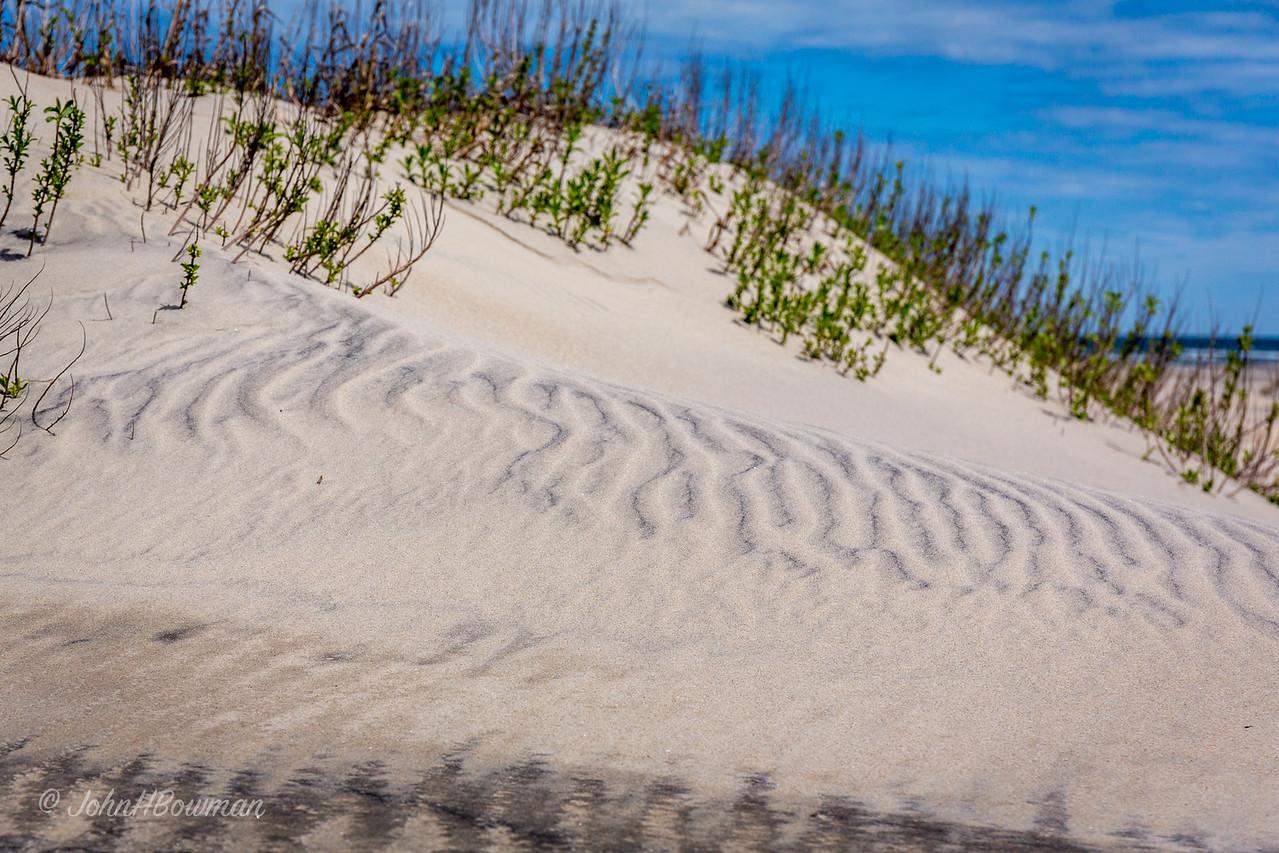 Pattern in Sand Dune, Oregon Inlet Lifesaving Station