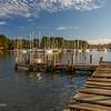 Locklies Marina from Rappahannock Oyster Company Dock