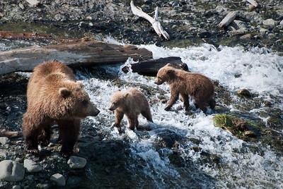 Katmai National Park & Preserve, Alaska © 2010