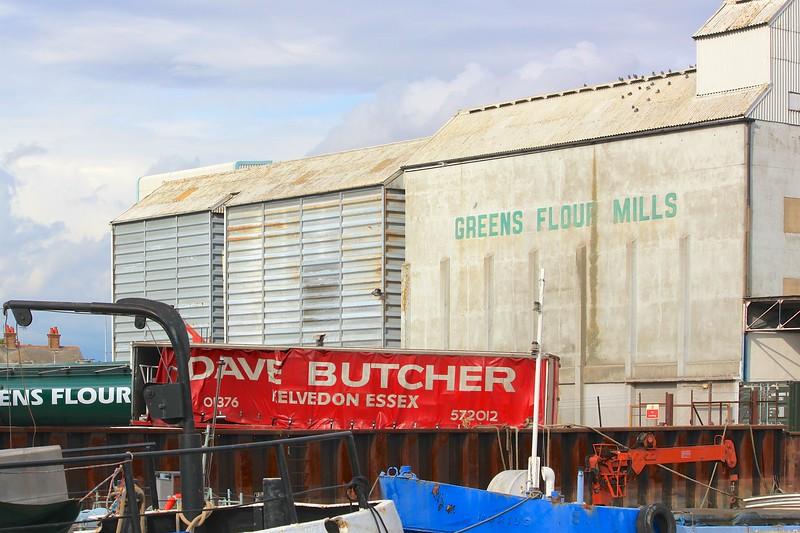 River Chelmer – Fullbridge